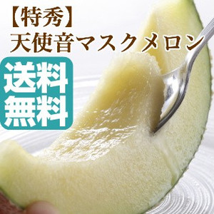 静岡県産高級マスクメロン